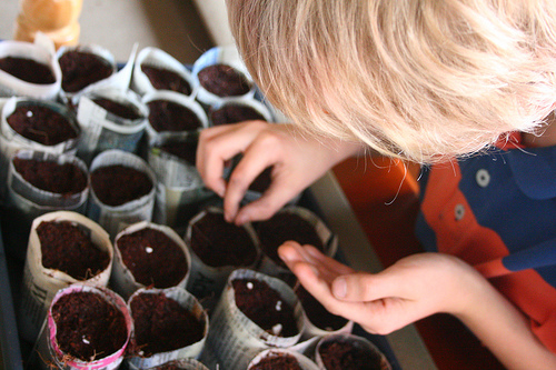 Seed Planting Project